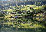 Escapada de un día a Hardangerfjord desde Bergen. Bergen, NORUEGA