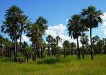 Excursión de un día completo a Chaco desde Asunción,