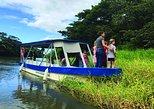 Parque Nacional Palo Verde y excursión cafetera. Liberia, COSTA RICA