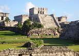 Coba Ruins, Cho HaCenote, Tulum and Paradise Beach Tour. Playa del Carmen, Mexico