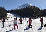 Fujiten Snow Resort and Lake Kawaguchi Day Trip from Tokyo, Tóquio, JAPÃO