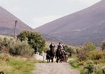 Horse Riding Excursions from Kalamata. Kalamata, Greece