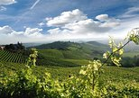 Turin to Piedmont Wine Tour with Tasting and Cellar Visit. Langhe-Roero y Monferrato, ITALY