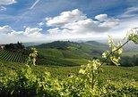 Tour del vino de Turín a Piamonte con cata y visita a la bodega. Langhe-Roero y Monferrato, ITALIA