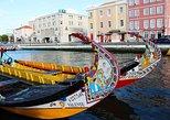 Excursão de um dia para grupos pequenos com cruzeiro de barco do Porto para Aveiro e Coimbra. Oporto, PORTUGAL