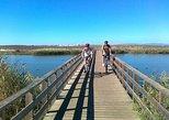 A costa de Albufeira e excursão de bicicleta na zona rural, Albufeira, PORTUGAL