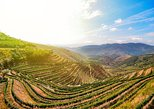 My Douro - Full Day, Wine Tasting, River Cruise and Lunch from Peso da Regua, ,