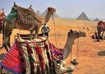Excursão terrestre: viagem diurna do Porto de Alexandria até Cairo. Alejandria, Egito