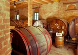 Le Marche Region's Oldest Wine Estate 2-Hour Tour and Tasting. Ancona, ITALY
