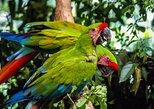 Visita ao zoológico El Pantanal em Guayaquil, Guayaquil, Equador