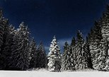 Moonlight Snowshoe, Portland, OR, UNITED STATES
