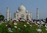 Delhi Agra, Taj Mahal Private Tour by Express Train with Lunch. Nueva Delhi, India