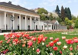 Black Forest and Baden-Baden Day Trip from Frankfurt,