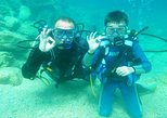 Scuba Diving for Beginners from Chania. La Canea, Greece