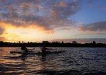 Mangroves, Sunset and Bioluminescence Kayak Tour, Puerto Jimenez, COSTA RICA
