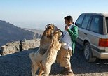 Jabl Shams with Nizwa for tours and sightseeing, Mascate, OMAN
