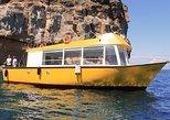 YELLOW BOAT MOGAN: 3h Tour en Barco + Snorkeling. Gran Canaria, ESPAÑA