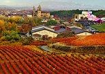Vitoria y la región del vino de Rioja. Bilbao, ESPAÑA