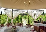 Unforgettable Vineyard Lunch in Tuscany. San Gimignano, ITALY