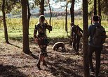 Truffle Hunting Experience with Wine and Lunch in Tuscany. San Gimignano, ITALY