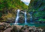 Maui Luxury Full Circle Road to Hana Waterfalls & Lunch, Maui, HI, ESTADOS UNIDOS