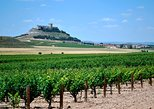 Premium Ribera del Duero wine tour with lunch & hotel pick-up. Madrid, Spain