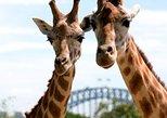 Crucero por el puerto de Sídney con entrada al Zoo de Taronga,