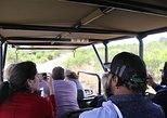 Full Day Ultimate Pilanesberg National Park Safari. Johannesburgo, South Africa