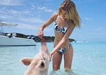 Full-Day Small-Group Tour to Pig Beach by Powerboat. Nassau, BAHAMAS