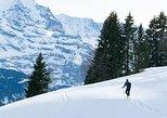 Excursión con raquetas por los Alpes suizos con raquetas desde Interlaken. Interlaken, SUIZA