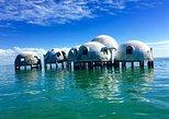 Ten Thousand Islands Adventure Boat Tour. Naples, FL, UNITED STATES