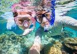 Excursão Terrestre de Curaçao: Aventura de Snorkel. Curazao, BRASIL