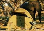 Chobe Camping 1day & 1night, Livingstone, ZIMBABUE