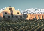 Viva Catena - Argentinian Wine Empire - Gourmet Lunch, Mendoza, ARGENTINA