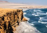 Half day Tour to the Paracas National Reserve from Puerto San Martín, Paracas, PERU