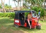 Village Tour In Bentota by Tuk-Tuk from Bentota. Bentota, Sri Lanka