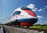 Viaje de 1 día de Moscú a San Petersburgo en tren con Hermitage y Palacio de Catalina,