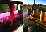 Winery Tour at Ash Ridge. Hastings, New Zealand
