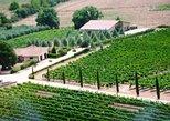 Villa Corano Winery Tour in Tuscany. Lago de Bolsena, ITALY
