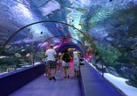 Antalya City Tour, Duden Waterfall, and Aquarium with Lunch. Belek, Turkey