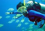 Scuba Diving for Beginners with Lunch. Fethiye, Turkey