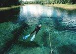 Snorkel Or Dive The Amazing Rainbow River Florida, Crystal River, FL, ESTADOS UNIDOS