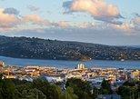 Taste of Dunedin City Sights and Peninsula Nature Cruise Ship Shore Excursion. Dunedin y la peninsula de Otago, New Zealand