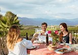 Etna Countryside Food and Wine Lovers Tour (private option available). Taormina, ITALY