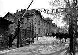 Auschwitz Guided Tour. Oswiecim, Poland