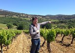 Small-Group Half-Day Languedoc Wine and Olive Tour from Montpellier, Montpellier, FRANCIA