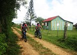Aventura en bicicleta de montaña por Punta Cana, Punta de Cana, REPUBLICA DOMINICANA