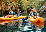 Acceso Prefetencial: Cenotes Mayas - Aventura en Xenotes por Xcaret Tour desde Cancún. Tulum, MEXICO