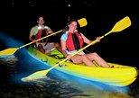 Bio Bay Kayak Tour in Fajardo. Fajardo, PUERTO RICO