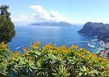 A special day in Capri - walking and boat tour. Capri, ITALY